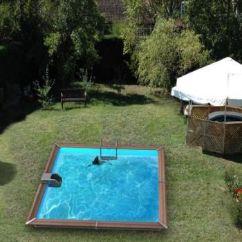 Waterclip piscine bois water clip optimum ovale 89x42x147m for Piscine waterclip avis