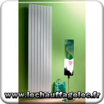 radiateur c lectrique fluide caloporteur acova fassane vertical etroit 2000 w couleur. Black Bedroom Furniture Sets. Home Design Ideas